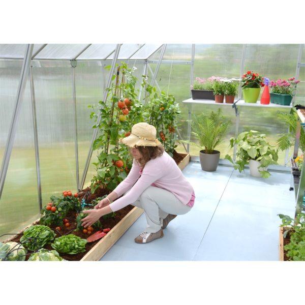 üvegház virágoknak