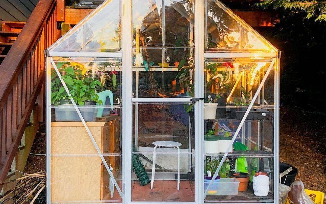 Üvegházaink elfogytak, januártól bővített termékkínálat!